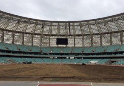 Olimpiya stadionunun ot örtüyü dəyişdirilir - FOTO