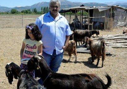 Klub çempion futbolçularını satıb keçi aldı - FOTOLAR