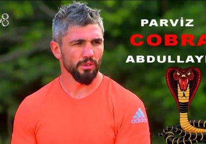 Pərviz Abdullayevin