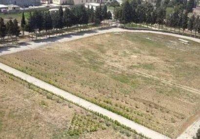 Sumqayıtda stadionun iki yerə bölünməsi ilə bağlı araşdırmalara başlanıldı